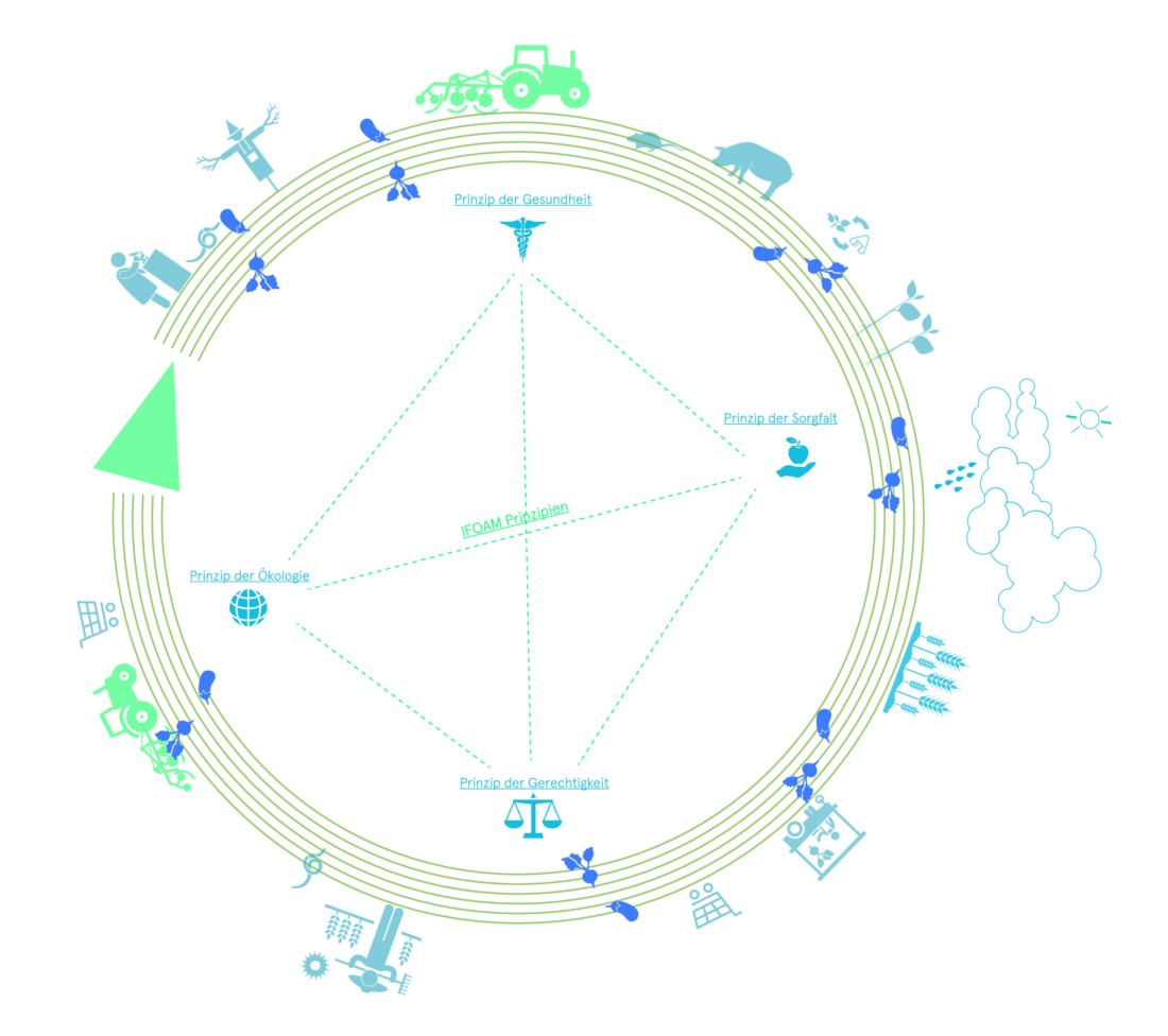 Biologische Landwirtschaft, Bio 3.0, #biodreinull, Wissensvisualisierung, FiBL, dform, SCR