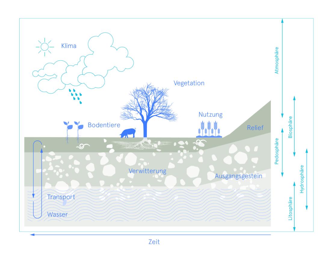 Bodenerosion, Boden, Bio 3.0, #biodreinull, Wissensvisualisierung, FiBL, dform, SCR