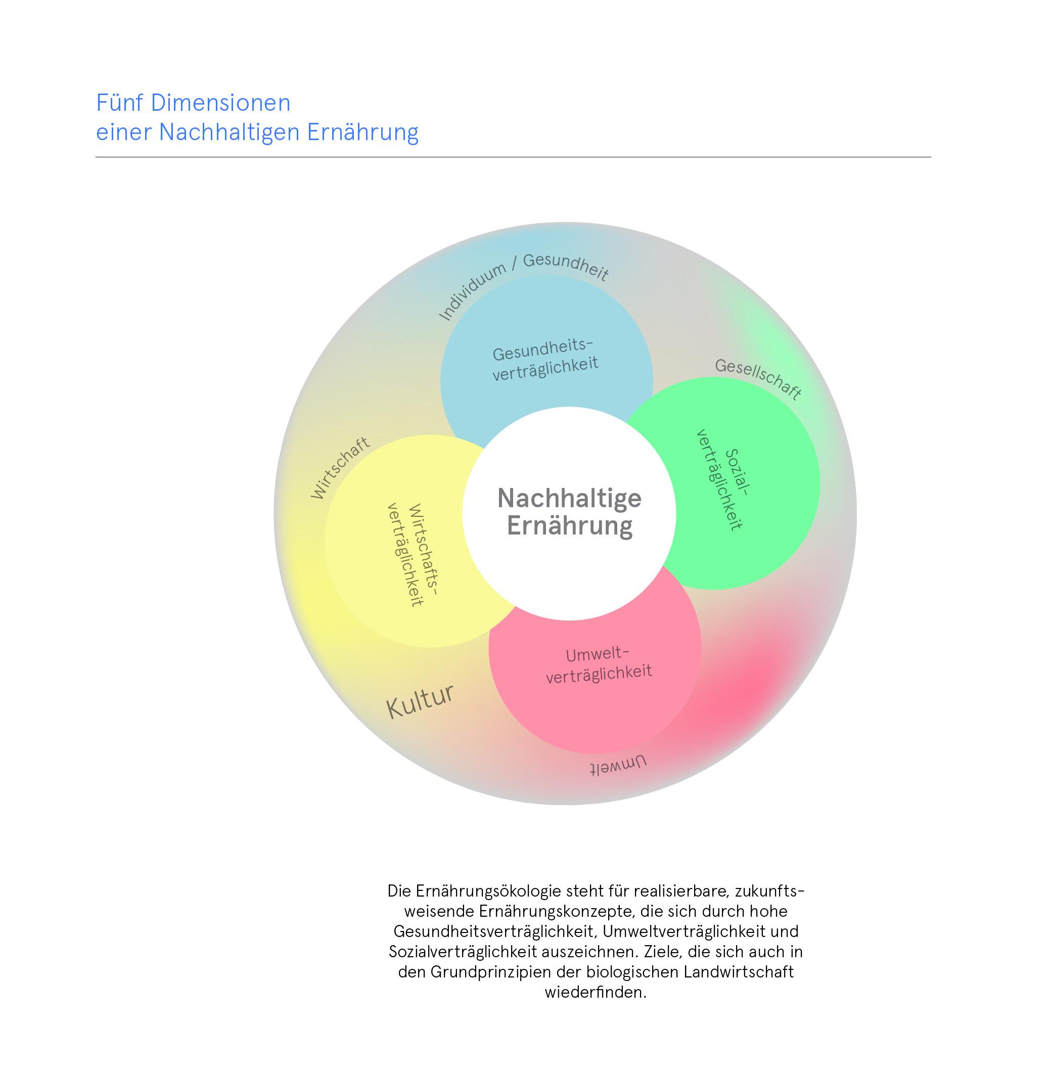 nachhaltige Ernährung fünf Dimensionen Wissensvisualisierung