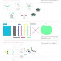 Ganzheitlichkeit Analysemethode Bio-Lebensmittel Kupferkristallisation Spektroskopie Wissensvisualisierung