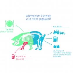 Lebensmittelverwertung Abfall Kraftstoff Tierfutter Dünger Wissensvisualisierung
