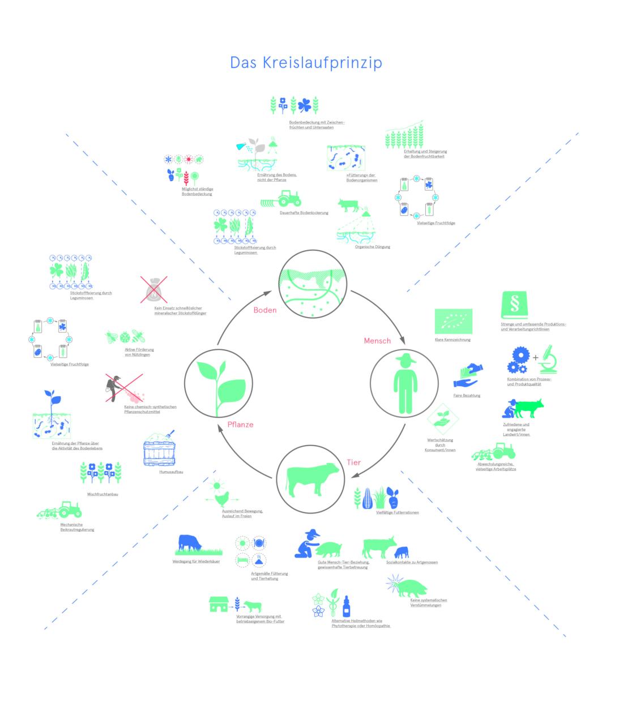Arbeitsplätze, Bio 3.0, #biodreinull, Wissensvisualisierung, FiBL, dform, SCR