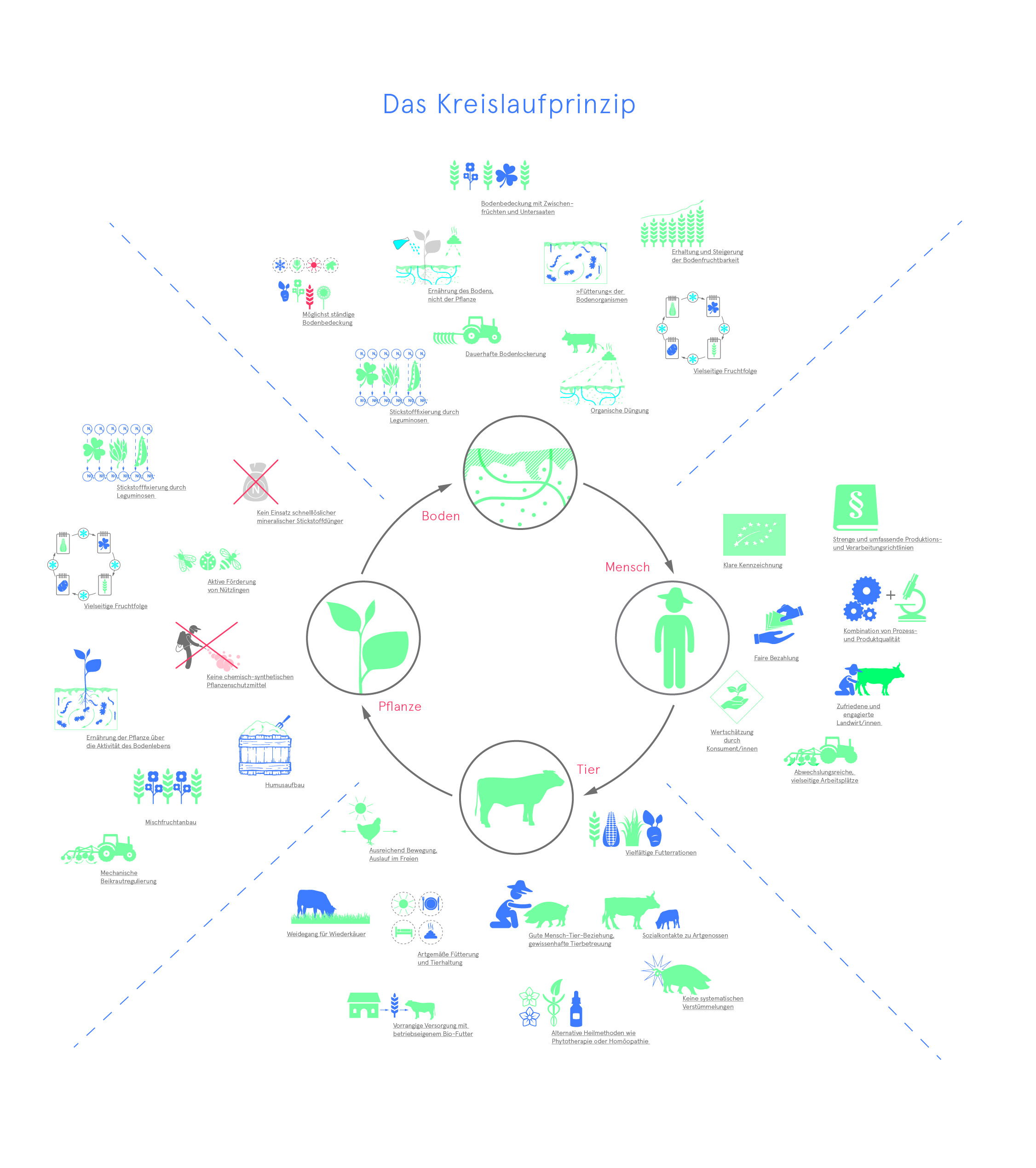 Kreislaufprinzip Arbeitsplätze Bio-Landwirtschaft Boden Pflanze Tier Mensch Wissensvisualisierung