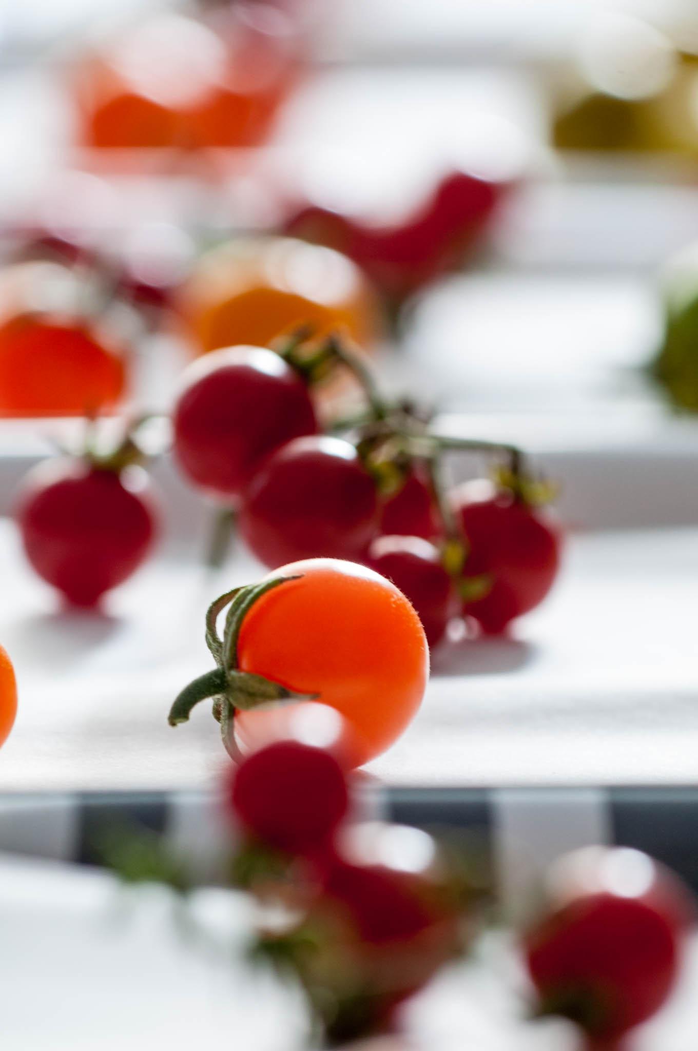 Tasting_forum Verkostung Bio 3.0 Paradeiser Tomaten Sortenvielfalt