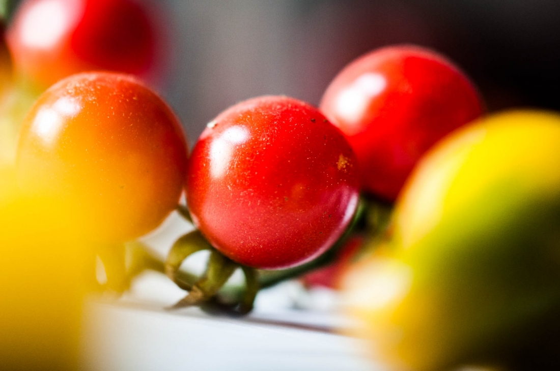Paradeis-Paradies, Bio-Tomaten, Tasting-forum, Verkostung, biodreinull, Genuss, organic