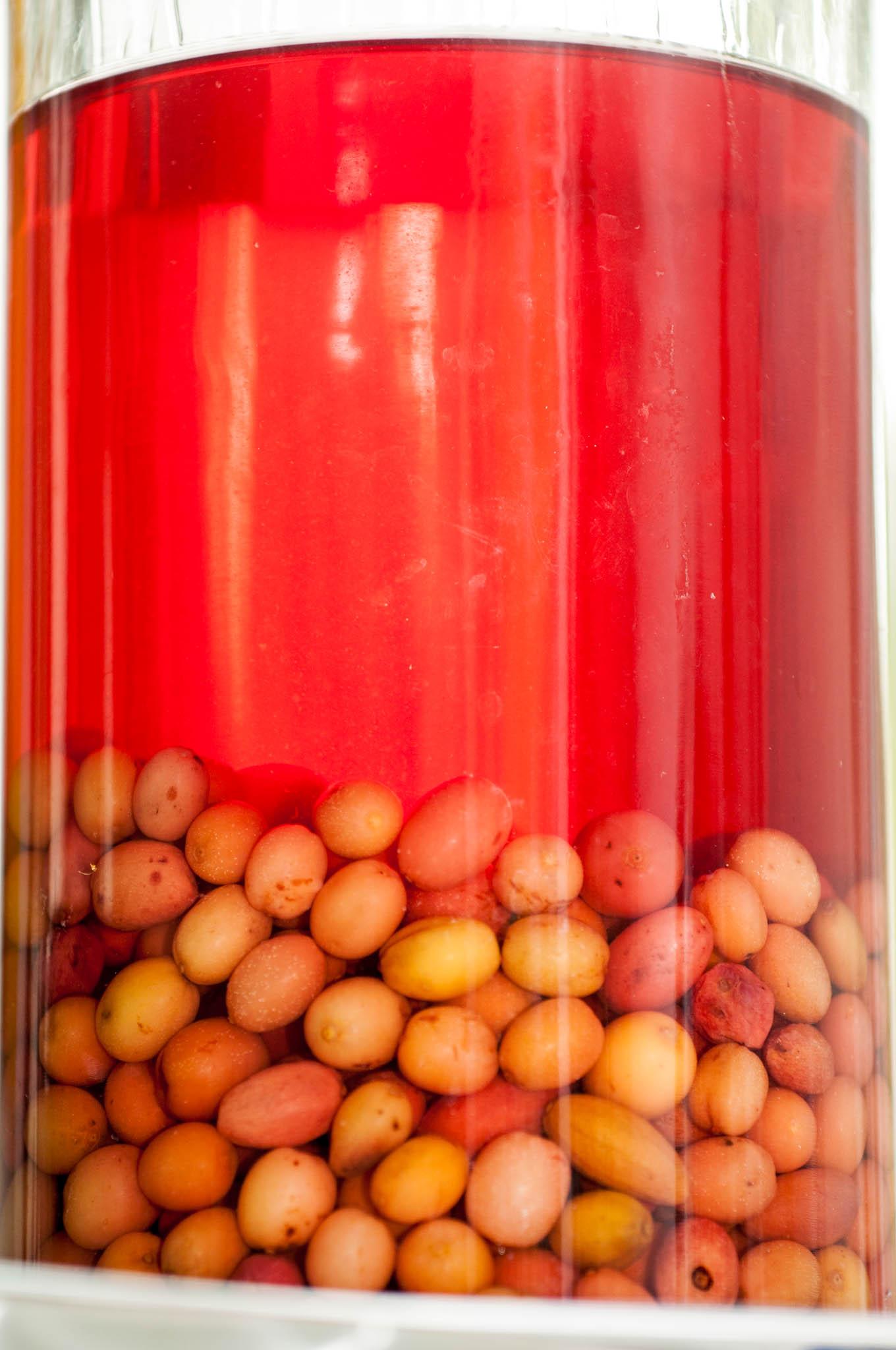Tasting_forum Verkostung Bio 3.0 Fruchtbrand