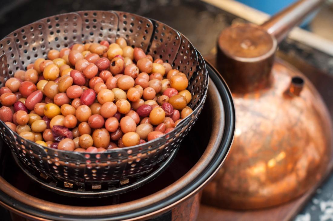 Bio-Frucht-Brand, Bio-Früchte, Tasting-forum, Verkostung, biodreinull, Genuss, organic