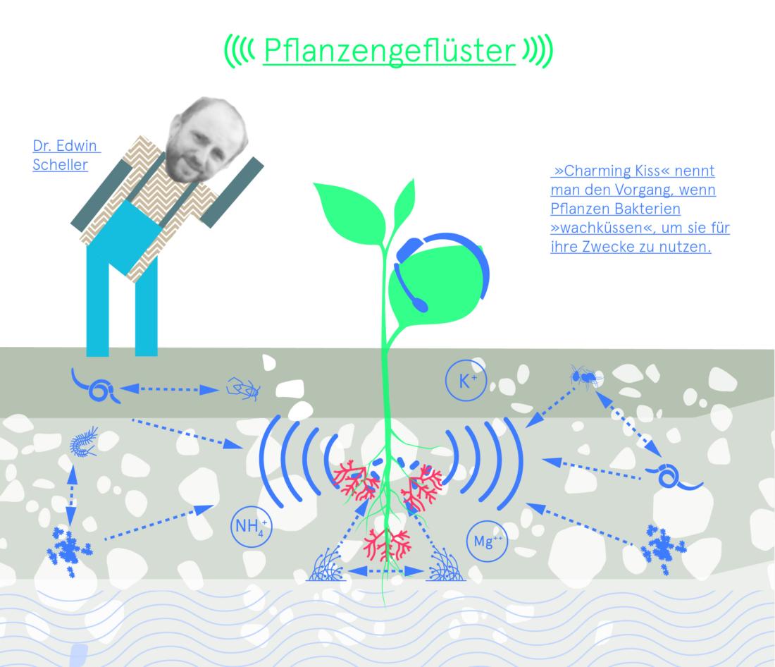 Düngung, Bio 3.0, #biodreinull, Wissensvisualisierung, FiBL, dform, SCR