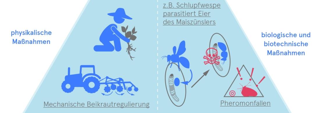 biologische schädlingsabwehr, Bio 3.0, #biodreinull, Wissensvisualisierung, FiBL, dform, SCR