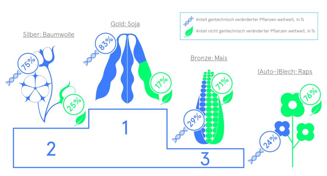 GV-Pflanzen, Bio 3.0, #biodreinull, Wissensvisualisierung, FiBL, dform, SCR