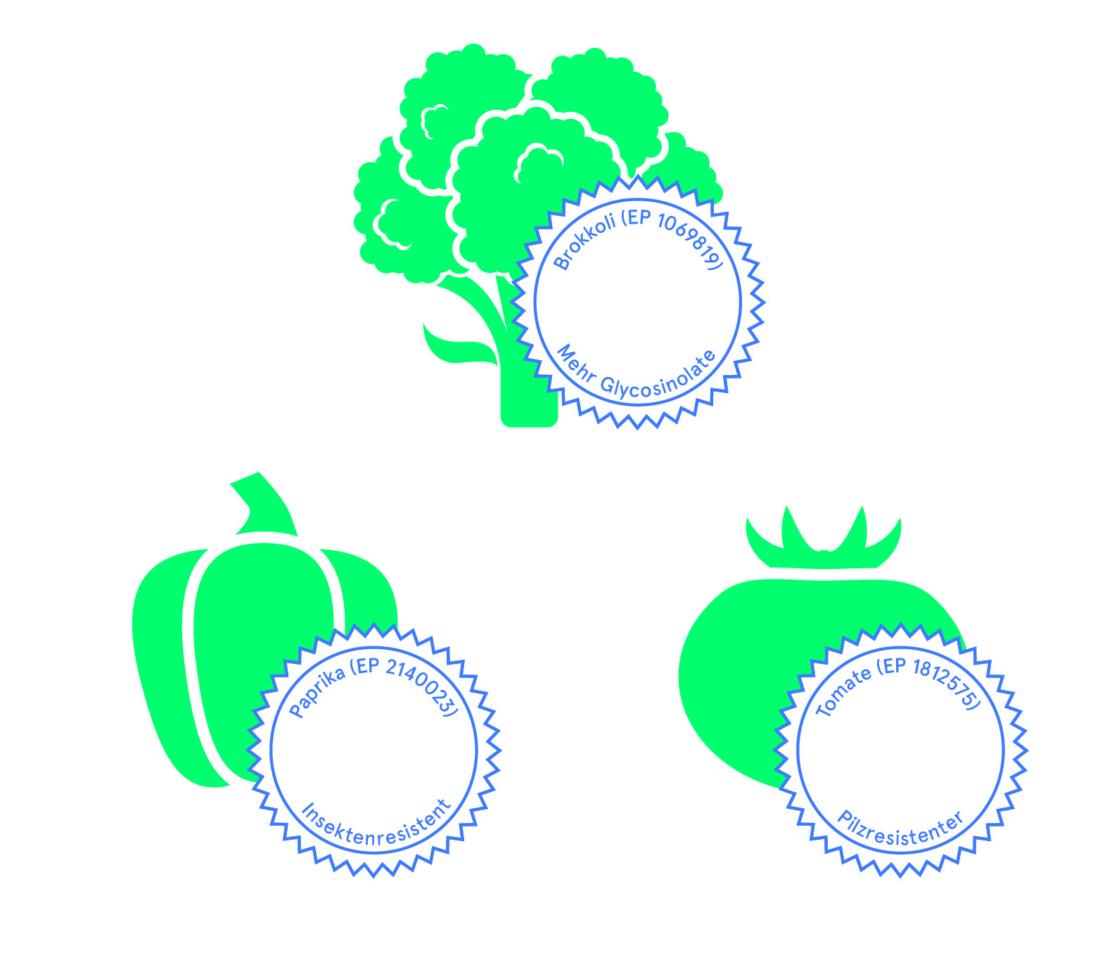 Patentierung von Lebewesen, Bio 3.0, #biodreinull, Wissensvisualisierung, FiBL, dform, SCR