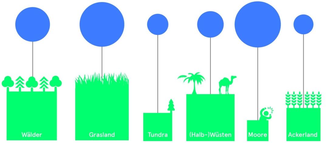 Bodenfruchtbarkeit, Boden gut machen, Bio 3.0, #biodreinull, Wissensvisualisierung, FiBL, dform, SCR
