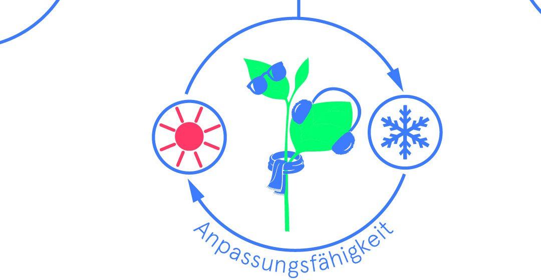 Resilienz landwirtschaftliche Betriebe Bio 3.0, #biodreinull, Wissensvisualisierung, FiBL, dform, SCR