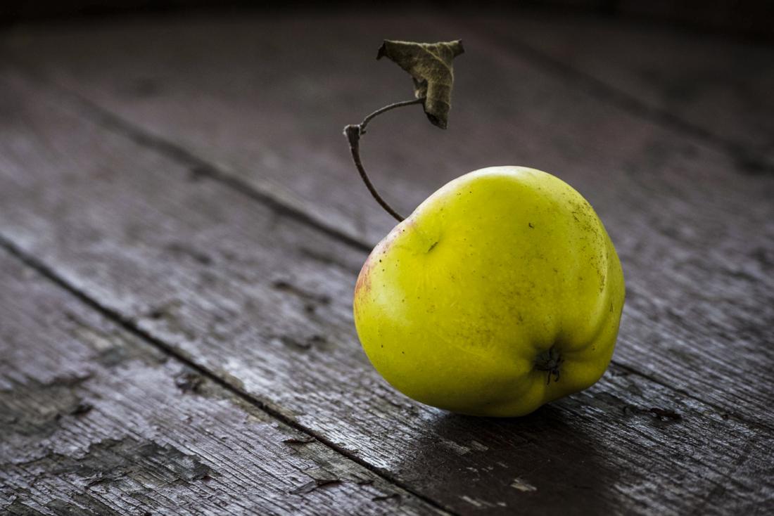 Bio-Cider, Apfel, Obst, Bio 3.0, #biodreinull, FiBL, Verkostung