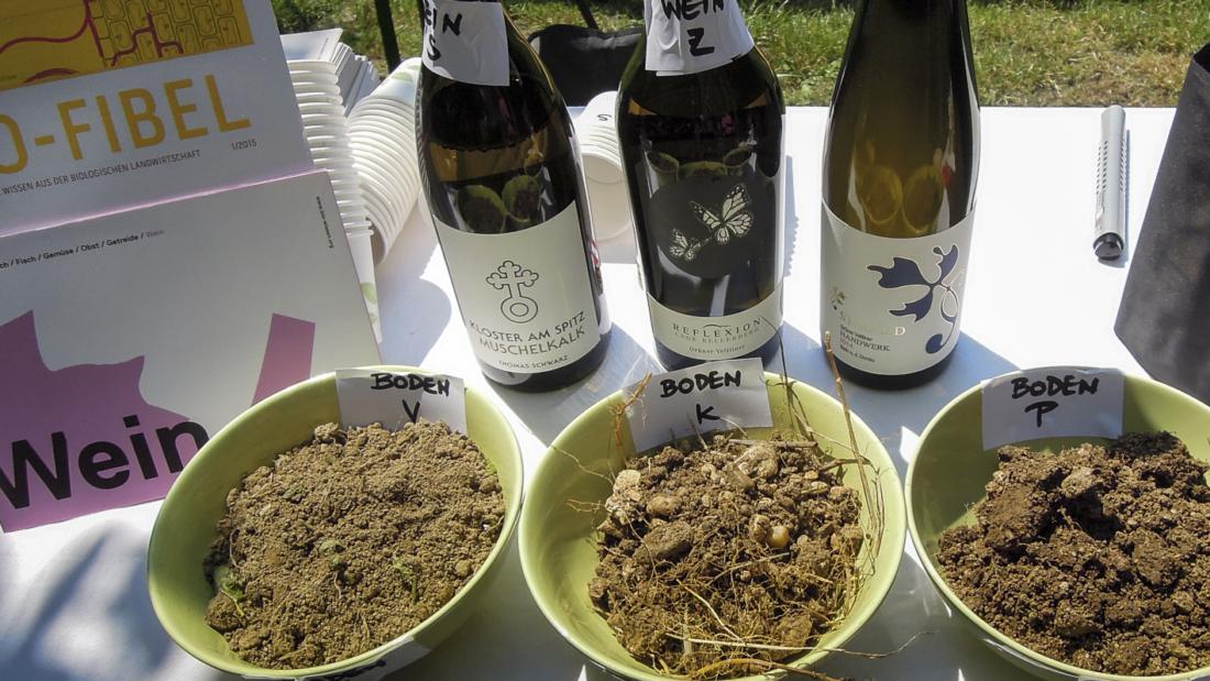 Kostbarer Boden Tasting_forum Bio-Boden Verkostung Bio-Wein Terroir Bio 3.0 #biodreinull