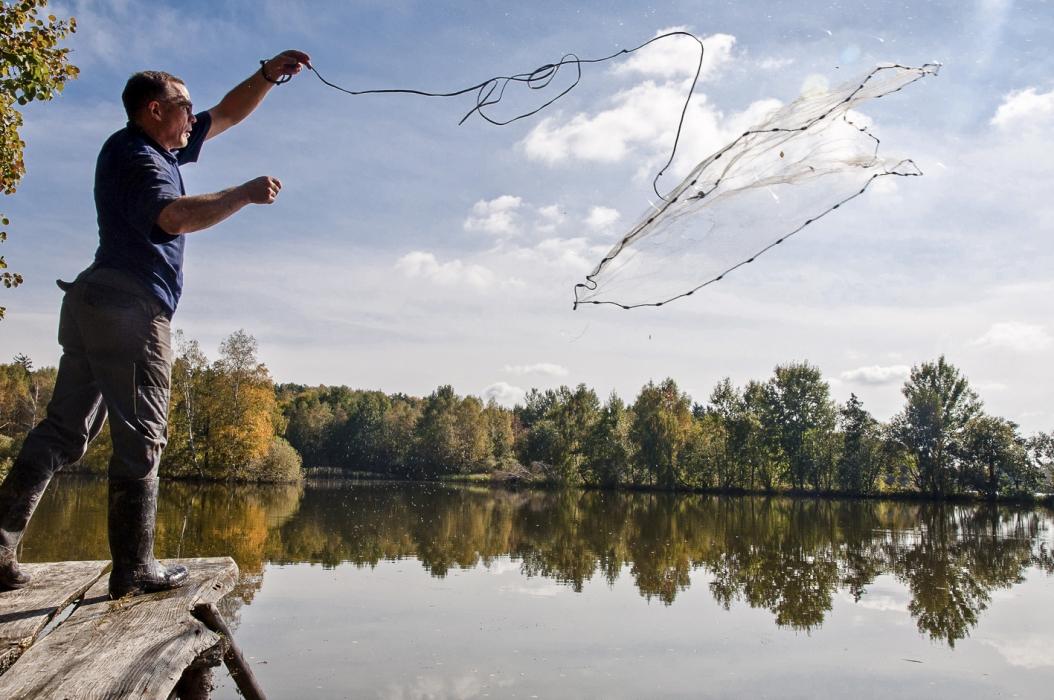Biofisch-Verkostung, Abfischen, Biofisch, Waldviertel, Marc Mößmer, Bio 3.0, #biodreinull, Tasting_forum