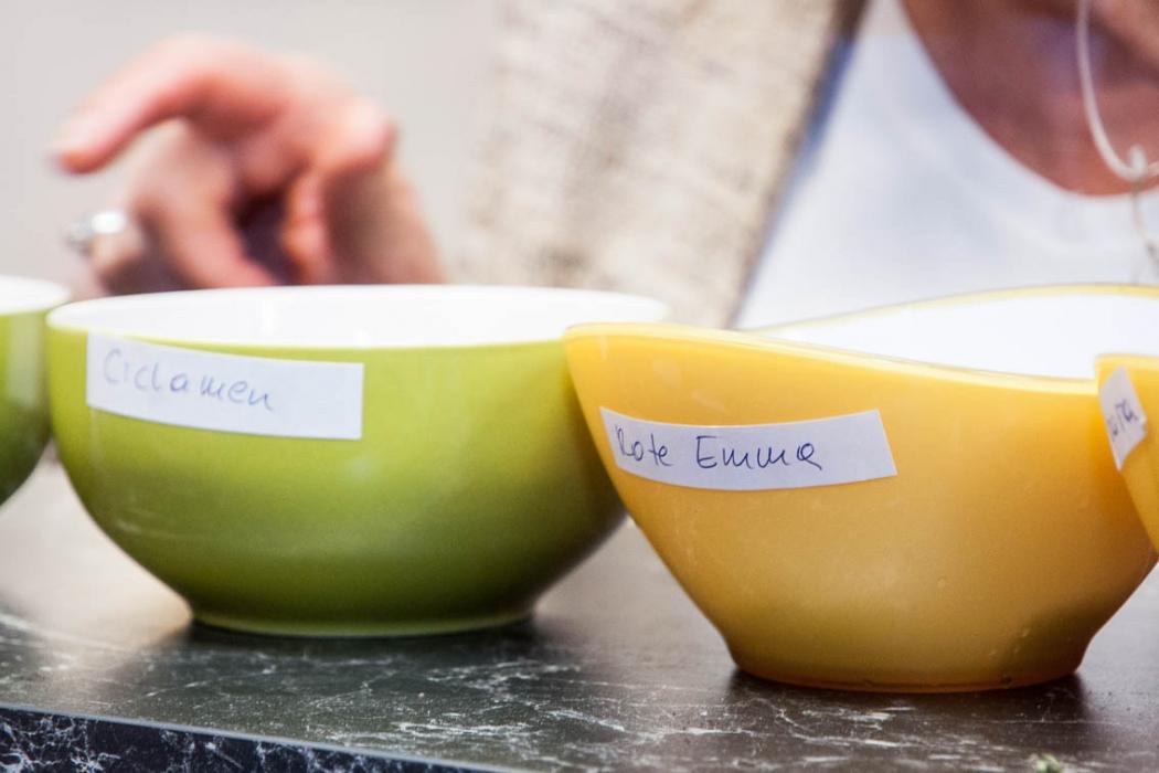 Tasting_forum Verkostung Bio 3.0 organic Erdäpfelvielfalt Bioerdäpfel-Vielfaltsverkostung #biodreinull